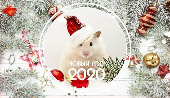 новый год 2020 от астролога валентины